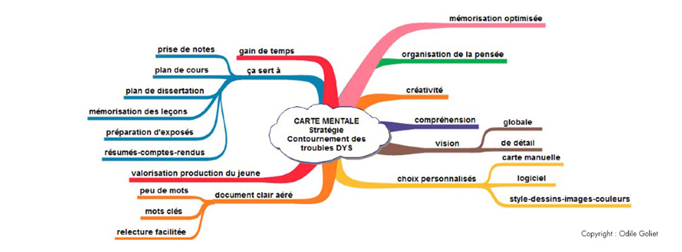 carte-mentale-dysfonctions-executives-dyslexie